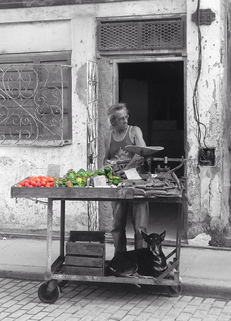 Peppers and Tomatoes, Havana